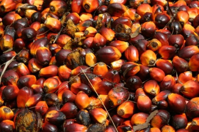 Image result for palmnut soup